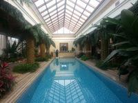 WS16051306 guangzhou manfuacturer wholesale garden decorative fiberglass artificial date palm tree