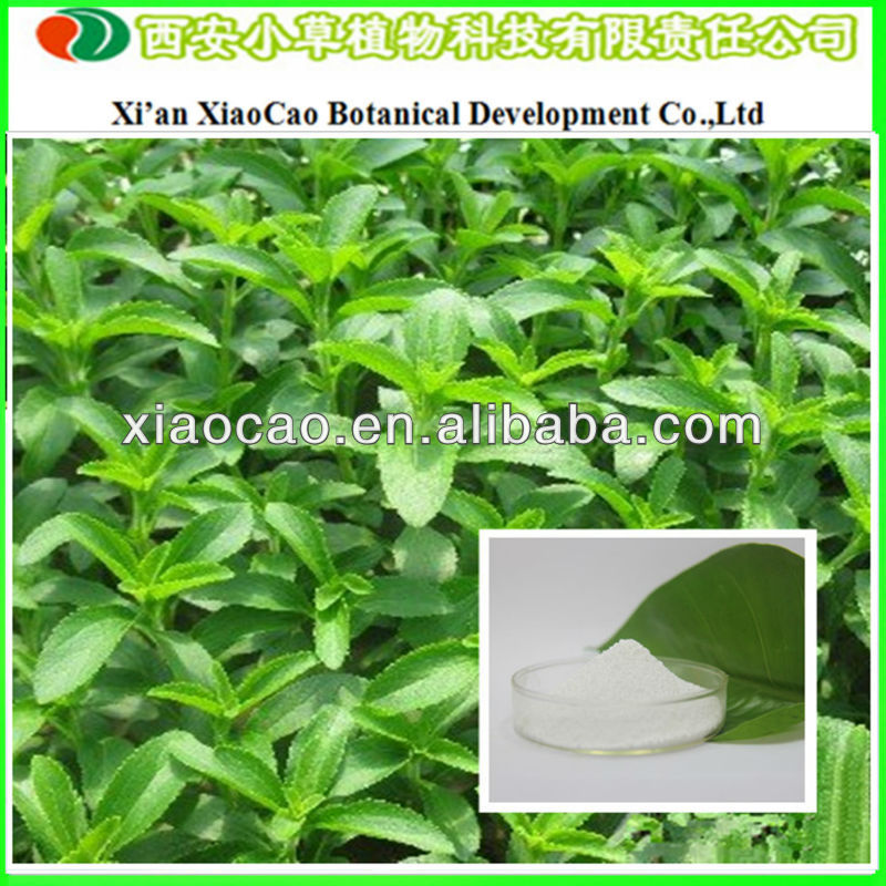 Supply Stevia Extract 90% Stevioside Pure Powder/Stevia Extract Rebaudiosid/Bulk Stevia Extract For Food Additives