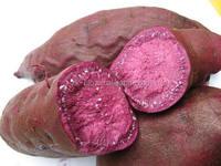 Organic Dehydrated Purple Sweet Potato Powder