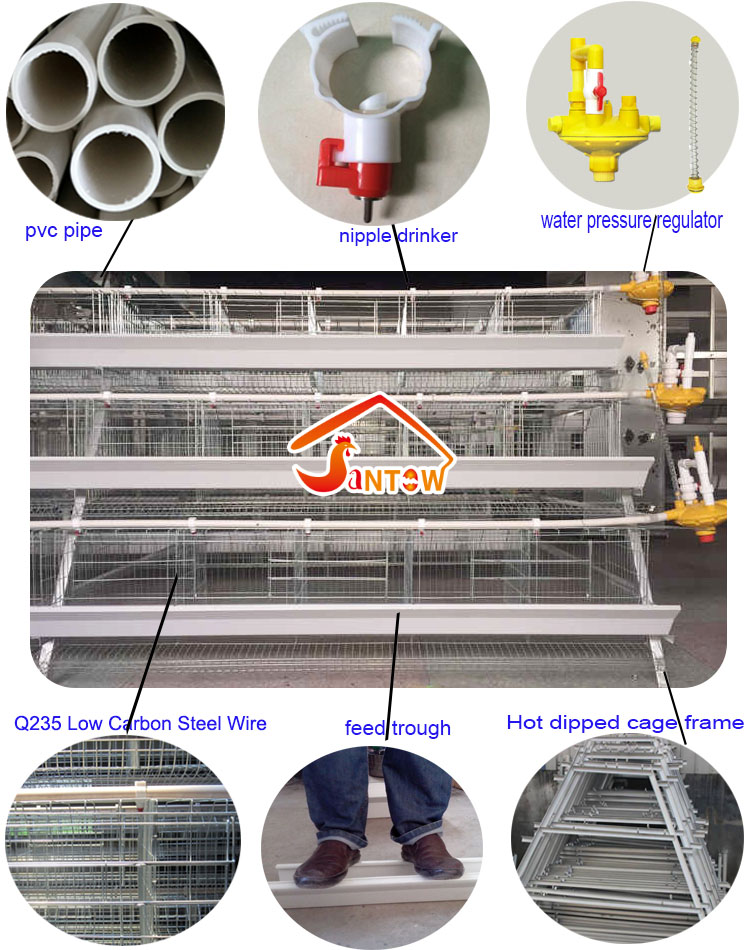 Galvanized Q235 Steel Hen Laying Battery Cage Price A Type Chicken Egg Layer Cages Automatic Poultry Farm House Design For Sale