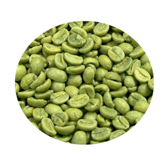 chicco di caffè verde acai