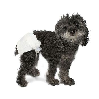 diaper for dog Female Dog Disposable Pants