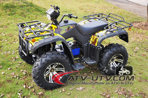 High Performance CE Approval 4000W 60V Adult Electric ATV For Sale