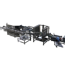 Fully automatic palletizer system for box and carton