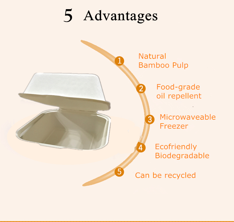 100% biodegradable disposable sugarcane hamburger box