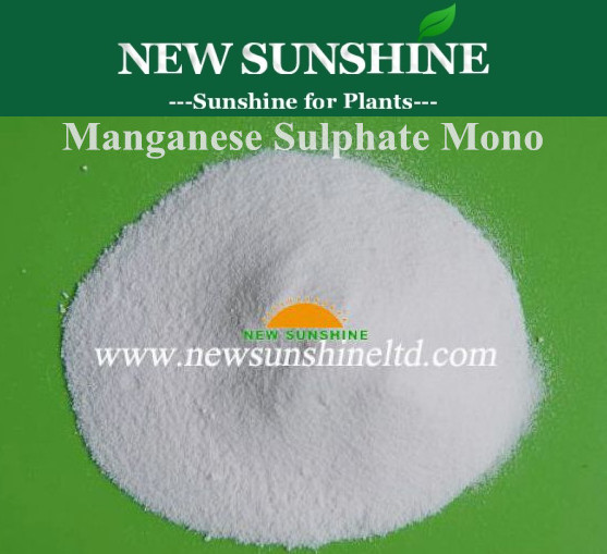 Manganese sulphate monohydrate 98% AR/Feed Grade