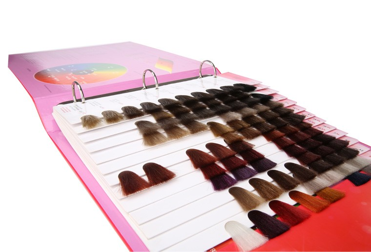 hair color swatch book for hair coloring hair color chart - Hair Color Book