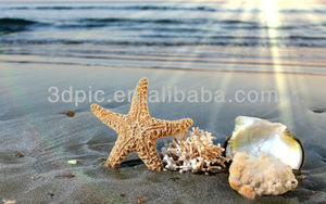 Beautiful beach scenery 3d picture of starfish shell