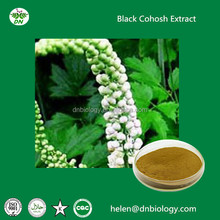 Free Samples Natural Black Cohosh Extract use for Antibacteria and anticancerBlack Cohosh Extract 2.5% for menstruation disorder