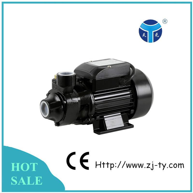 Qb60 Garden Hose Water Pump Craft Fountain Pump Buy Water