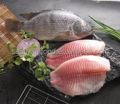 frozen tilapia fish fillets / whole round / gutted scaled