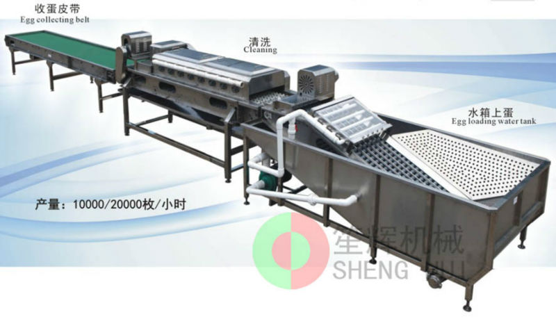 Assorted preserved egg/salted egg cleaning machine
