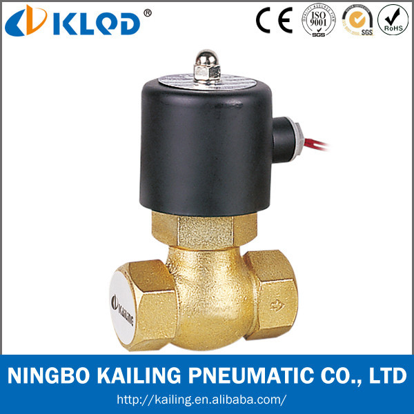 US (2L) model 2 way high temperature control valve for steam