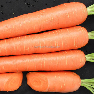 2017 Touchhealthy supply New Crop carrot seeds price