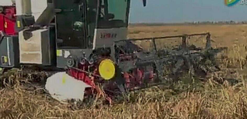 World Brand Small Mini Sorghum Rice Grain Combine Harvester Price - Buy  Combine Harvester,Samll Grain Harvester,Small Grain Combine Harvester Price