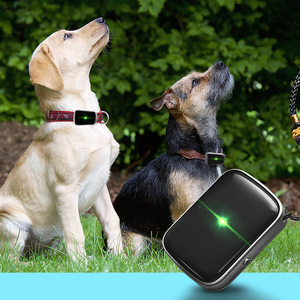 child-tracking device emergency cell phone locator anti lost device tracker a21 2g pet gps gsm locator