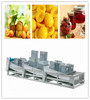 Fruit Canning Production Line/Canning Production Line