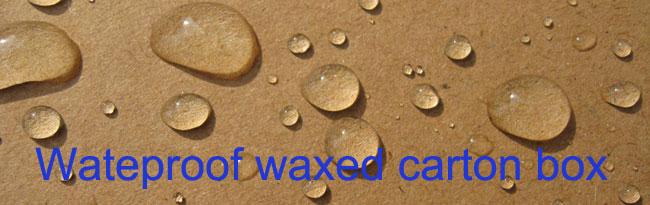 Customizable Waterproof Coated Carton Cardboard Sheets