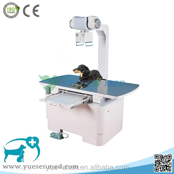 "Hot sale 10.4"" LCD touch screen veterinary equipment 200ma animal chest x ray machine"
