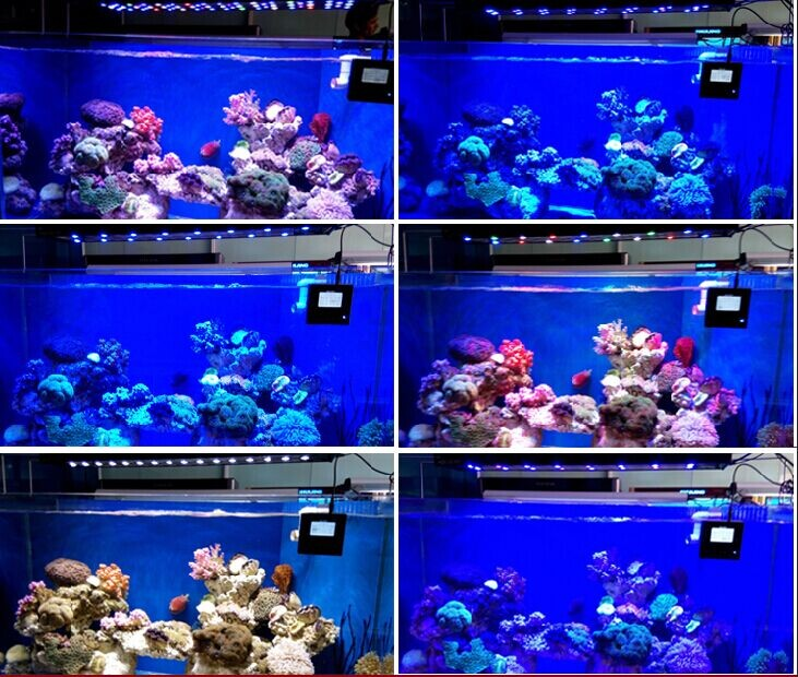 "Aql Light Intelligent 120cm/48""/4ft Marine Led Aquarium Reef Light ..."