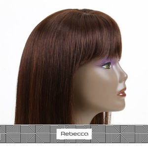 Rebecca finest quality 100% virgin remy human hair lace front box braid wig