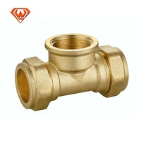 Pt Straight Thread Plumbing Casting Iron Brass Compression Fitting