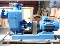ZW Self Priming Sewage Pump