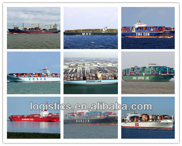20ft/40ft/40HQ freight services from china to Belize---Daniel