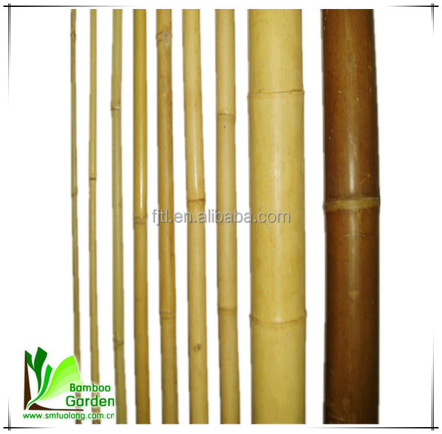 Moso Bamboo Poles/ Bamboo Canes/ Bamboo Sticks for Sale