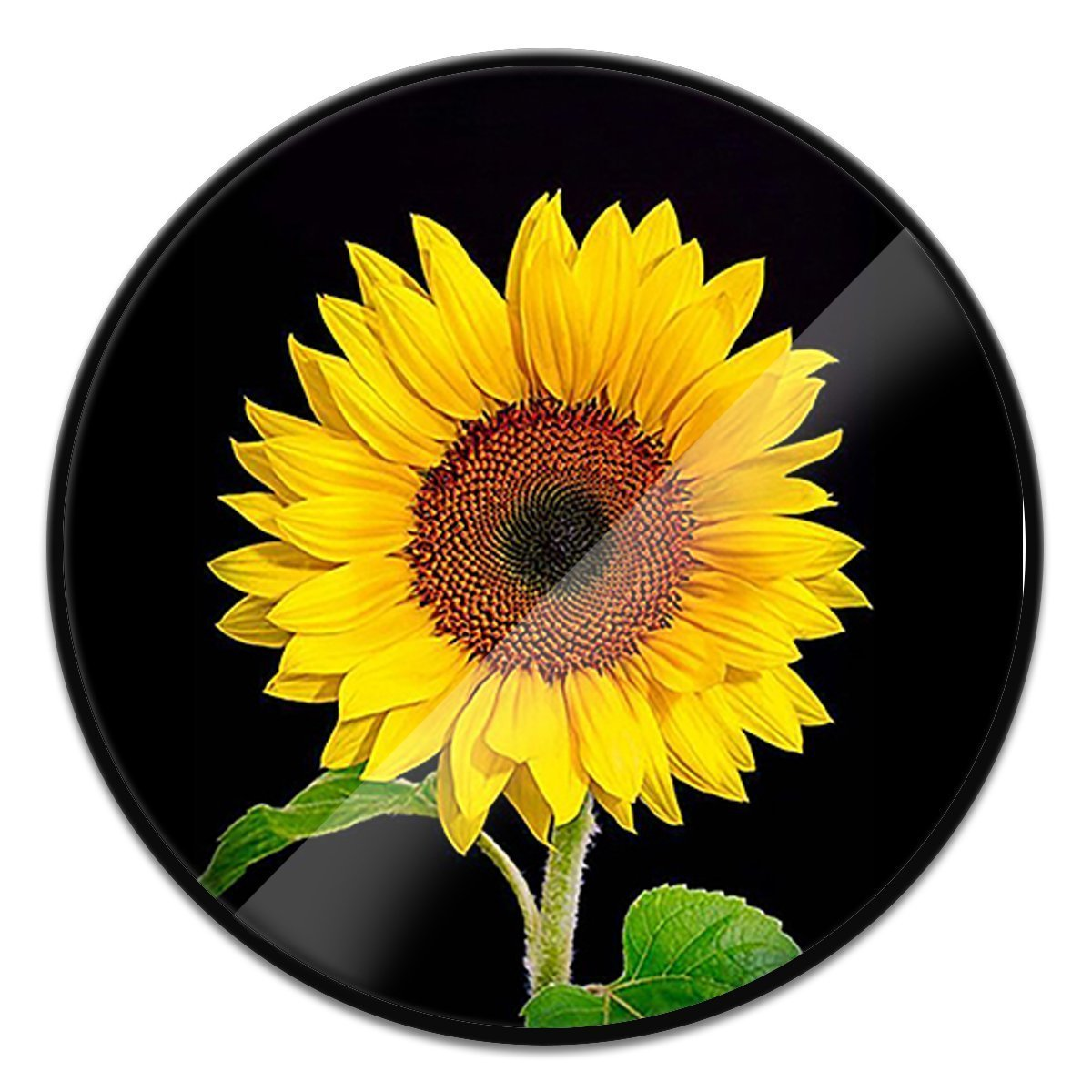 BALAVO Multi-Function Mounts and Stands, Expanding Stand Pop Grip Mount Sockets (Sunflower)