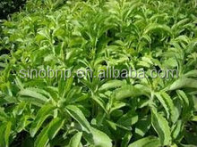 100%pure natural high quality sweetener Stevia wholesale,Stevia extract in bulk/99% Rebaudioside A, Stevioside