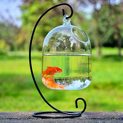 Cheap Clear Glass Fish Bowl Vase Find Clear Glass Fish Bowl Vase