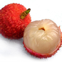 fresh litchi factory fresh fruits factory