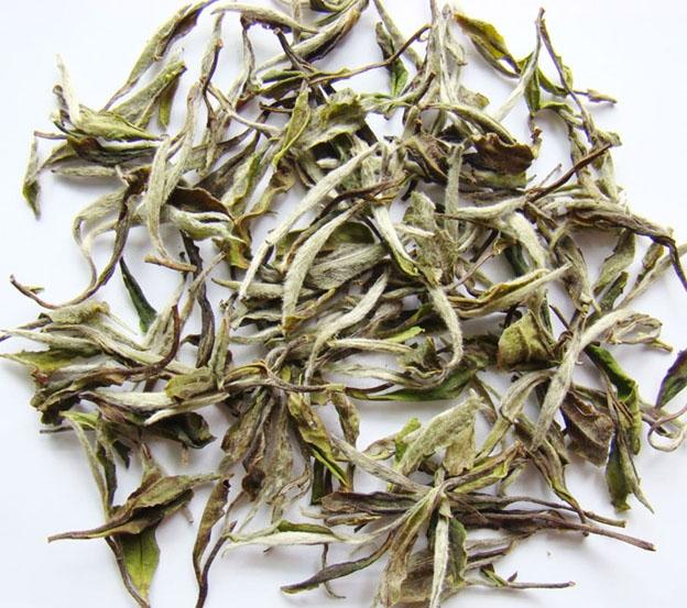Fujian white Tea peony loose Pai Mu Tan White tea FDA certificate loose tea - 4uTea   4uTea.com