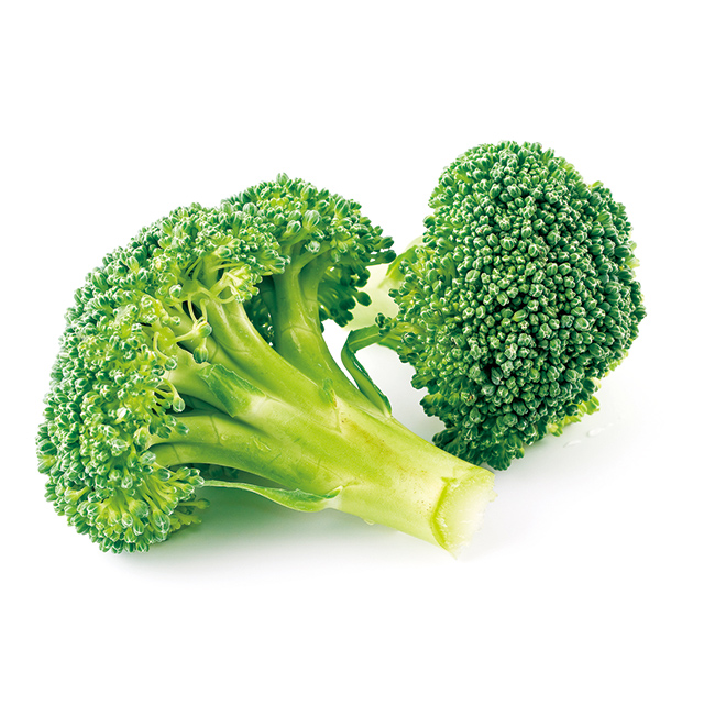Japanese Broccoli Vegetable Powder Wholesale Bulk