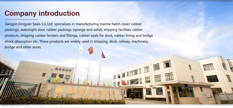 Jiangyin Dingyan Seals Co Ltd Rubber Seal Rubber Packing
