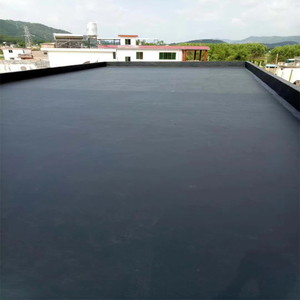 Quick Setting Sprayed Liquid Rubber Waterproof Coating Liquid State for Roof