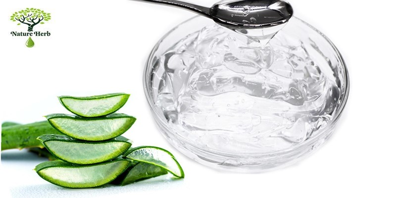 Korea soothing aloe vera gel for face
