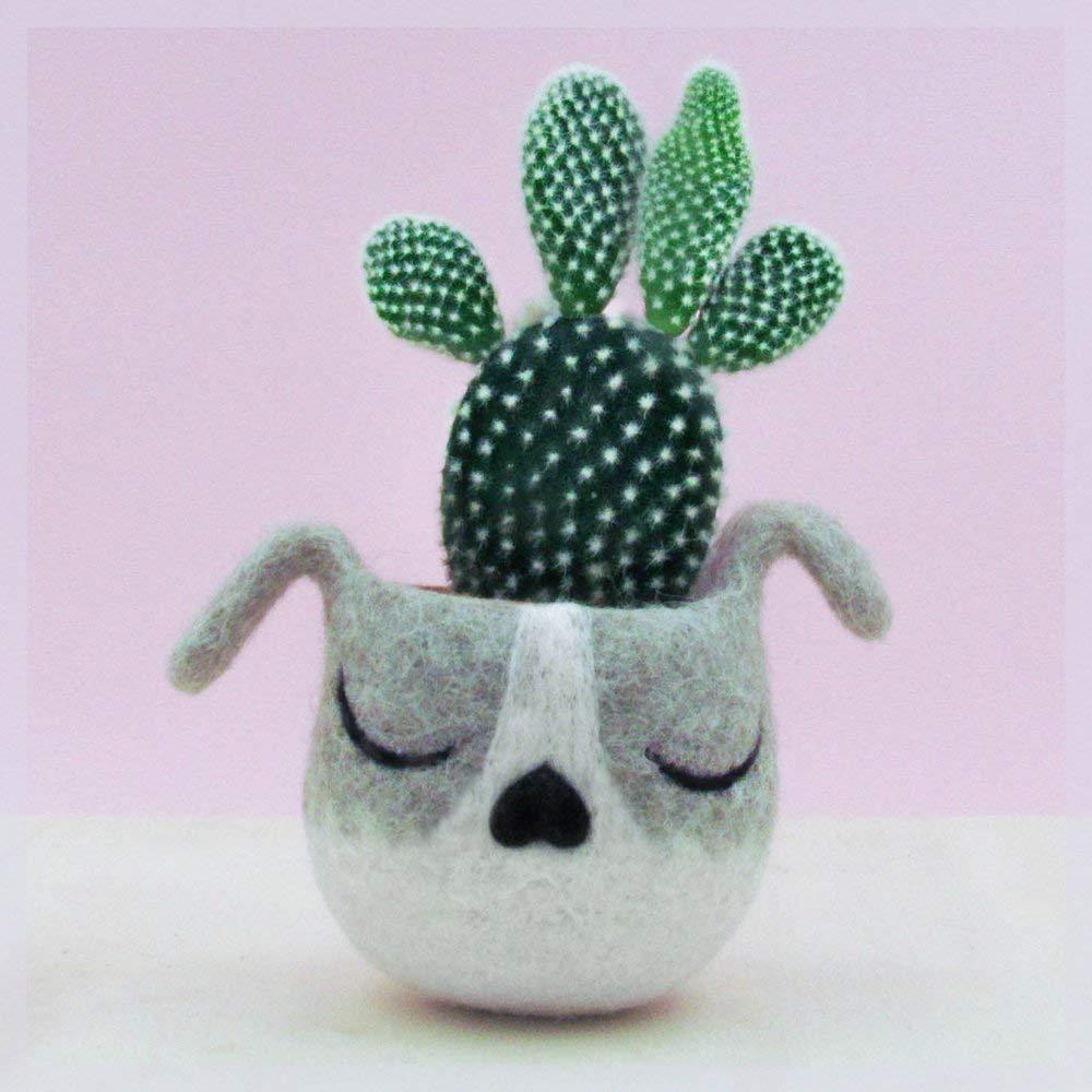 Succulent planter/puppy planter/dog head planter/cactus planter/puppy vase/gift for her/Dog lover gift