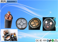 Strong and Stretching resistance IEC standard CE UL GS CCC approved SWA copper conductor power transmission armored cable