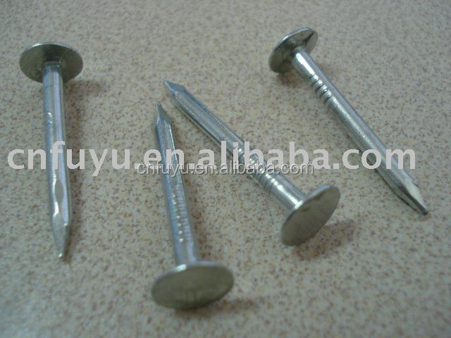 Galvanized Coated Broad Head Nails