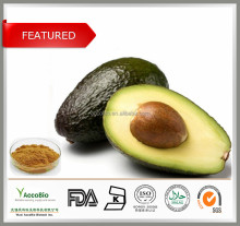 Bulk Supply 4:1 20:1 Avocado P.E. / Persea Americana P.E.