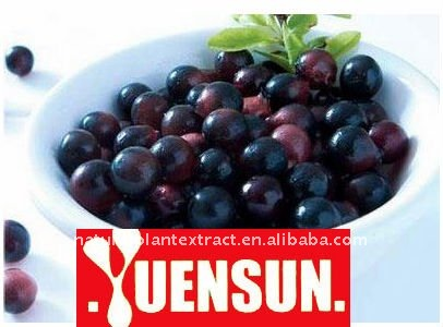 Acai Berry Extractsupplier with best price