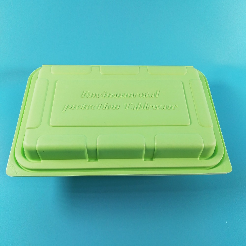 Disposable plastic takeaway packing two compartment lunch cooler