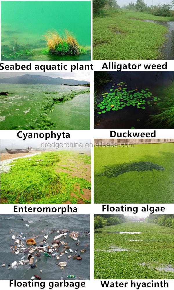China Julong Aquatic Weed Harvester/water Hyacinth Harvester/water ...