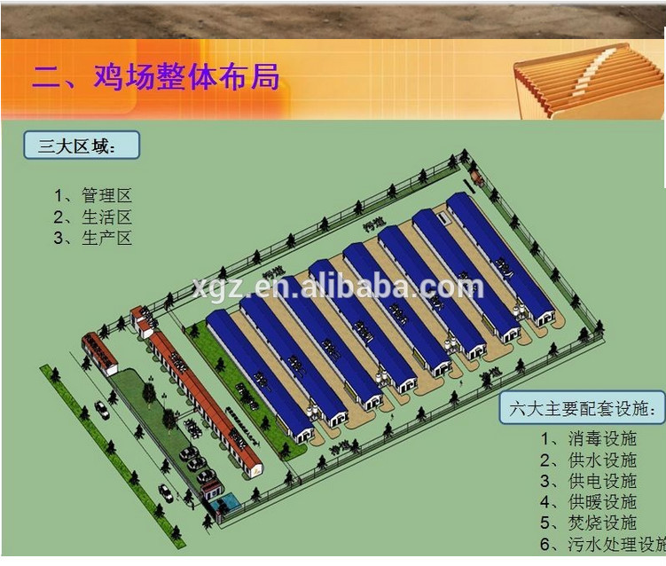 construction structural chicken farm building for steel chicken poultry house