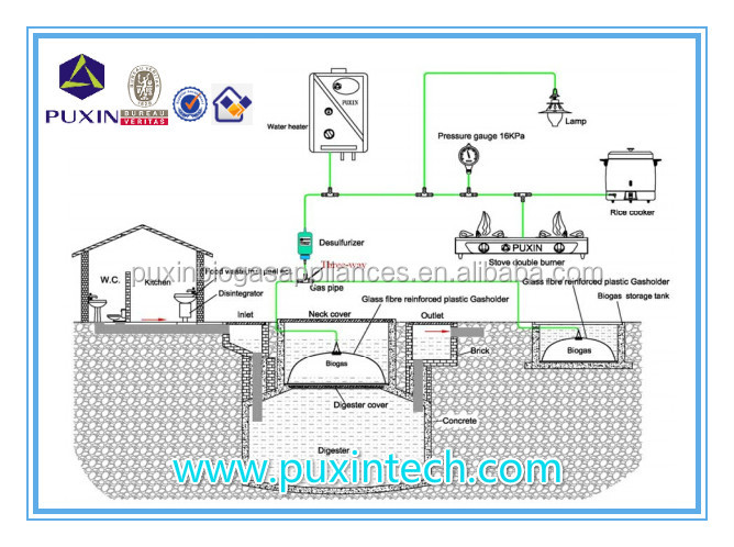 China Puxin Small Scale Biogas Plant for Small Farm to Generate ...