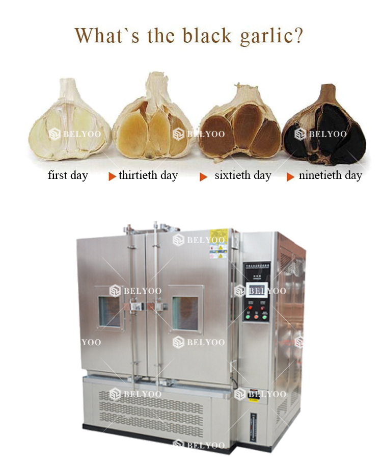 Black garlic fermenter machines industrial fermentor