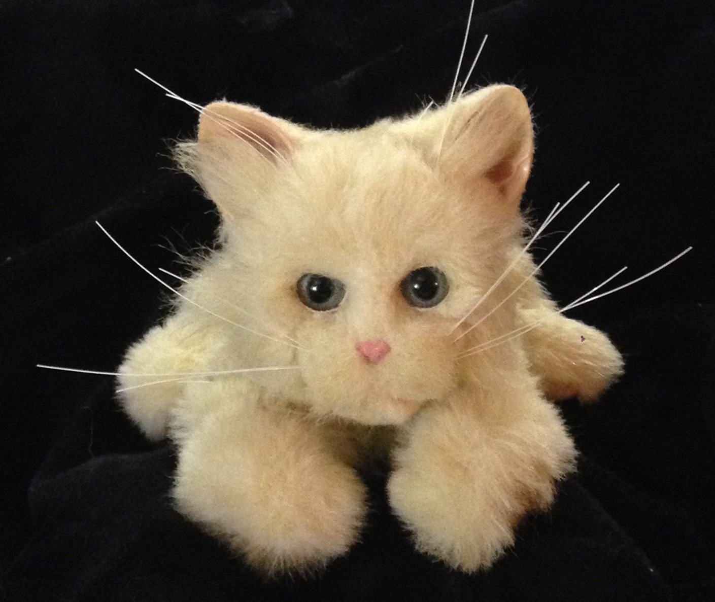 Buy Furreal Friends White Kitten Blue Eyes Bottle In Cheap Price On Alibaba Com