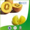 Yellow flesh Kiwi